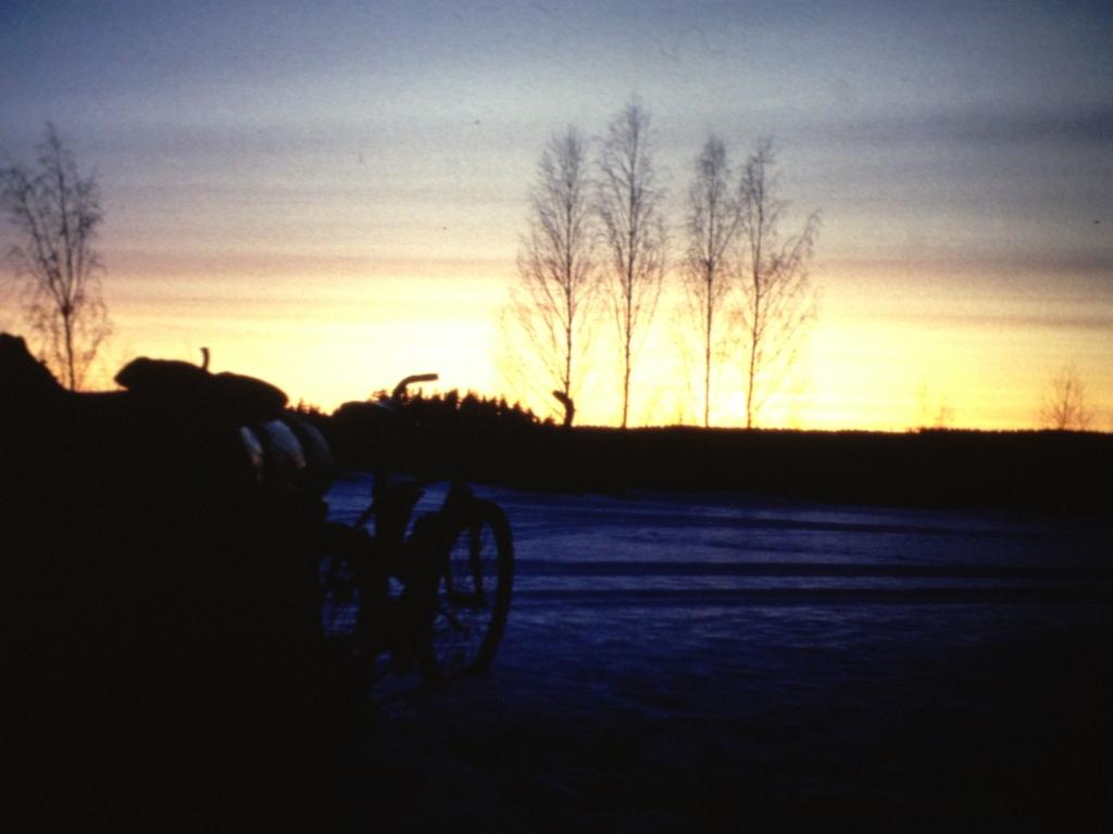 Griezelbos in Zweden