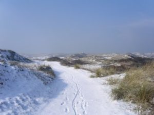 The dunes in wintertime